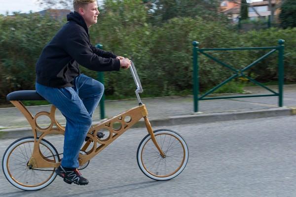 wood-bike