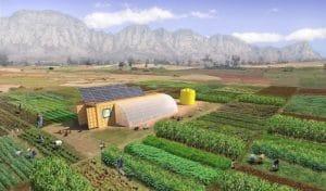 Eco & Sustainability