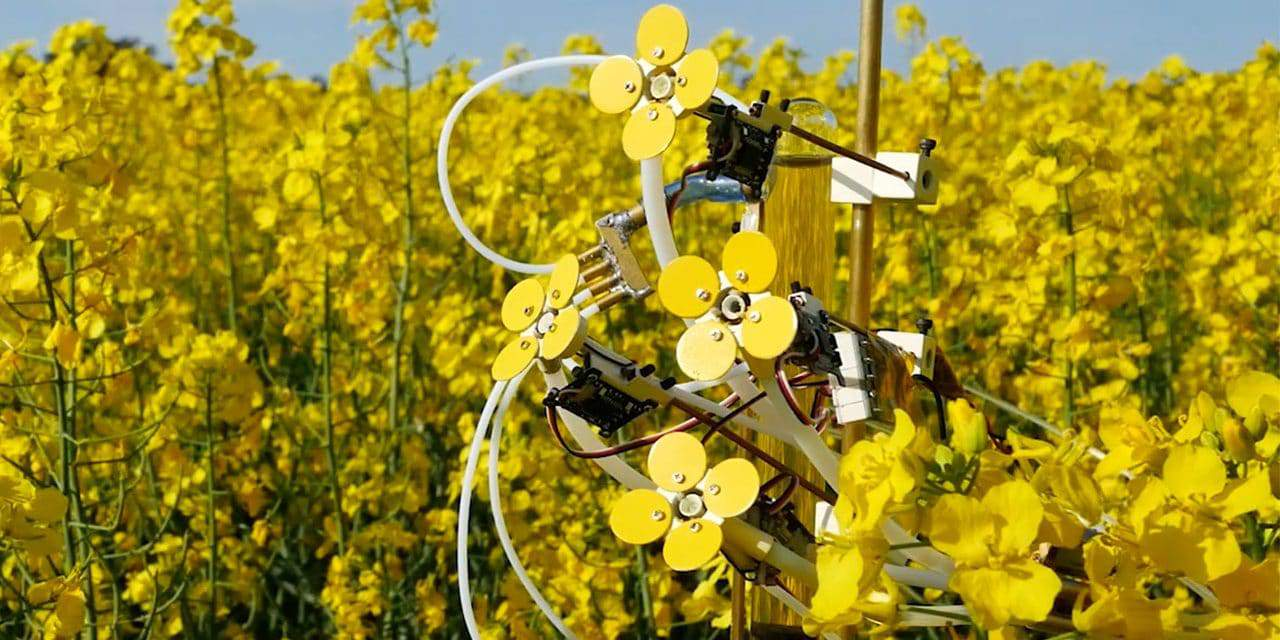 New Way to Help Keep Bees Safe with Robotic Flowers